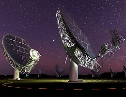 South African Radio Astronomy Observatory (SARAO)