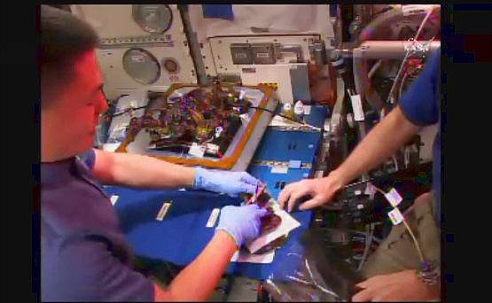 Salat im Weltraum - Die Zukunft der Eigenversorgung in der Raumfahrt